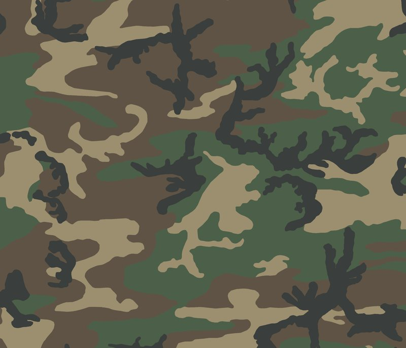 US Woodland.png